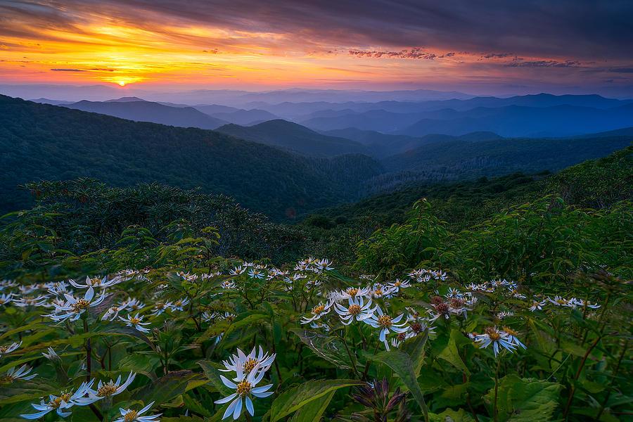 Craggy Gardens Photograph - Blue Ridge Parkway - Ashokan Farewell  by Jason Penland