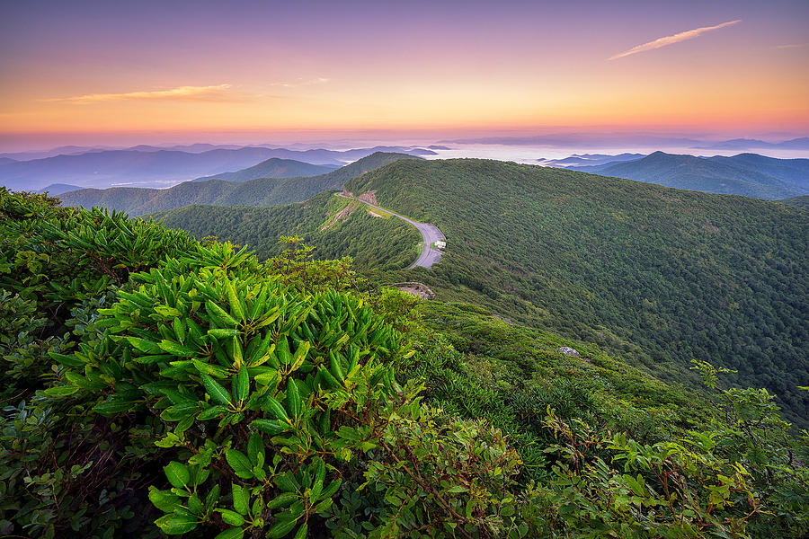 Blue Ridge Parkway Craggy Gardens Photograph By Jason Penland