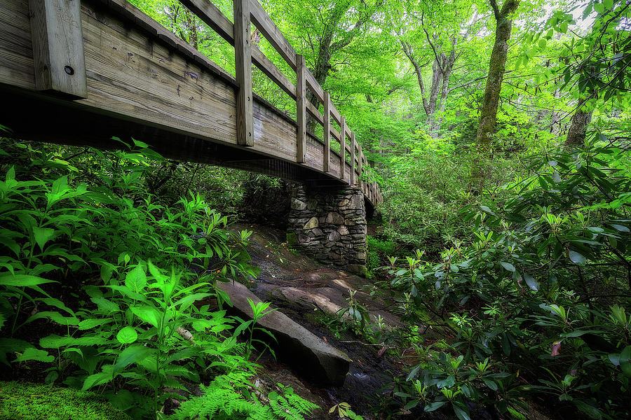 Blue Ridge Parkway Photograph - Blue Ridge Parkway - Crossings  by Jason Penland