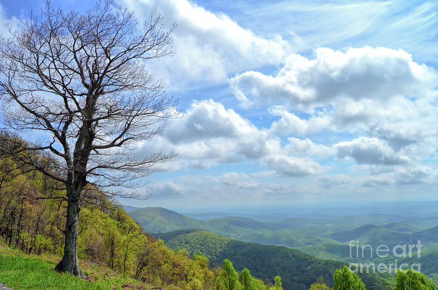 Blue Ridge Parkway Photograph - Blue Ridge Parkway Views - Rock Castle Gorge by Kerri Farley