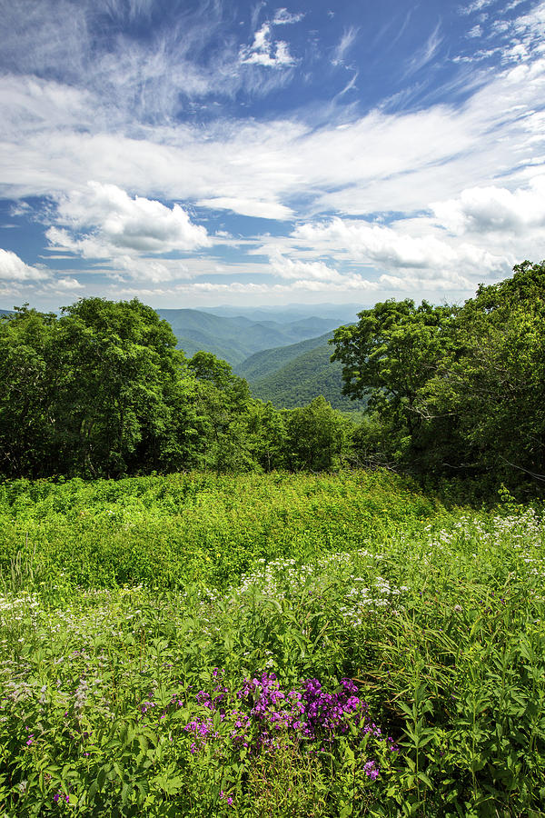Blue Ridge Parkway Photograph - Blue Ridge Summer by Jim Neal