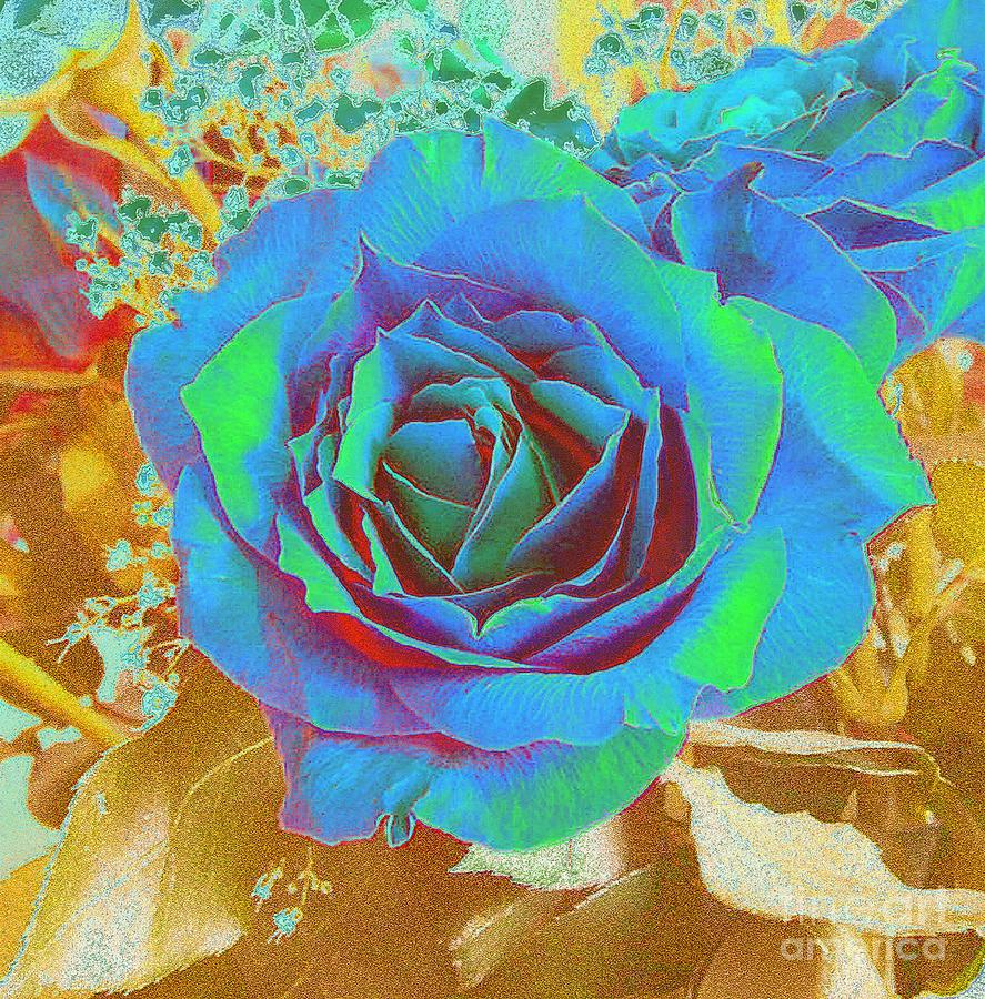 Rose Photograph - Blue Rose by Addie Hocynec
