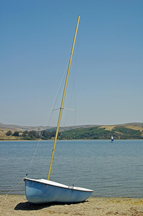 Blue Photograph - Blue Sailboat by Suzanne Gaff