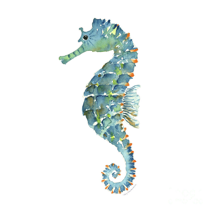 blue seahorse painting by amy kirkpatrick free clipart of baby animals clip art of baby animals line drawings