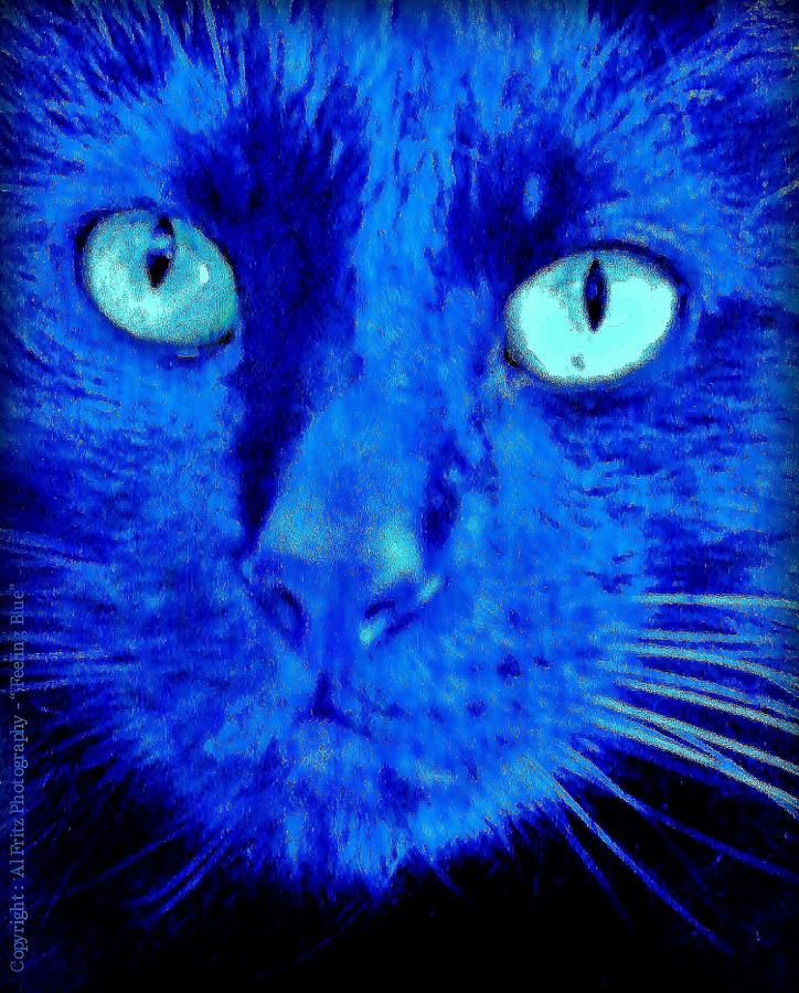 Eyes Photograph -  Blue Shadows by Al Fritz