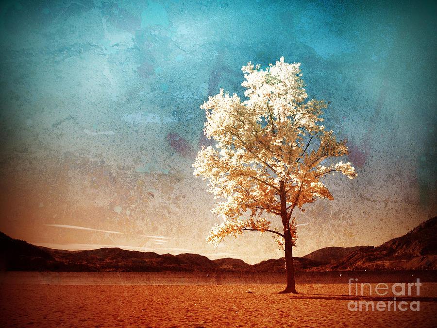 Beach Photograph - Blue Sky Dreams by Tara Turner