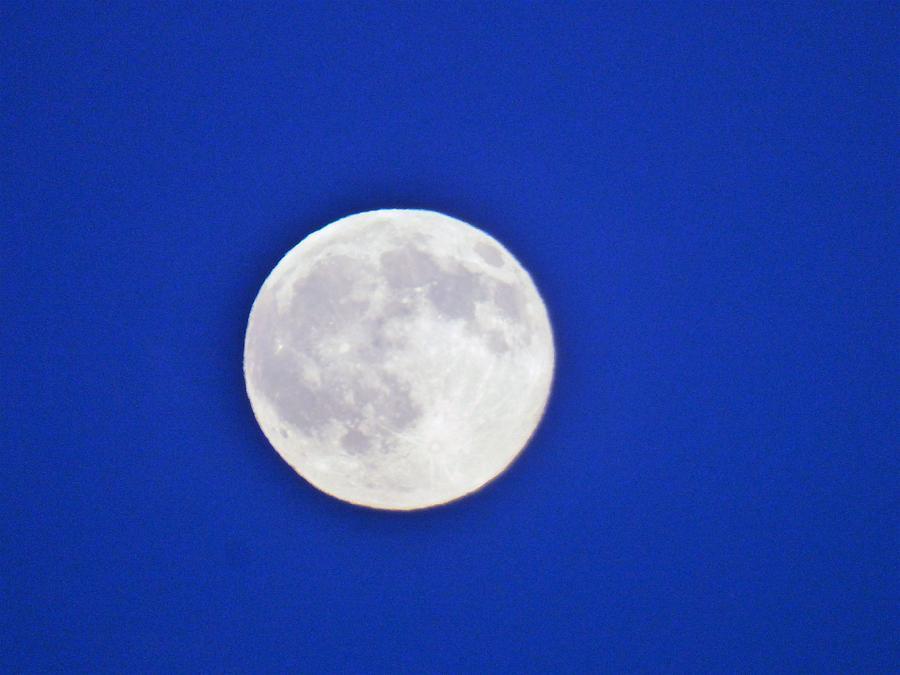 Blue Sky Moon Photograph by Scott Welton