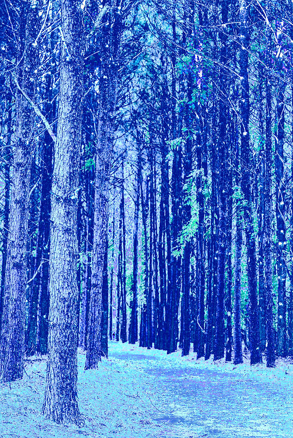 Trees Greeting Card - Blue Trees by Sharrell Holcomb