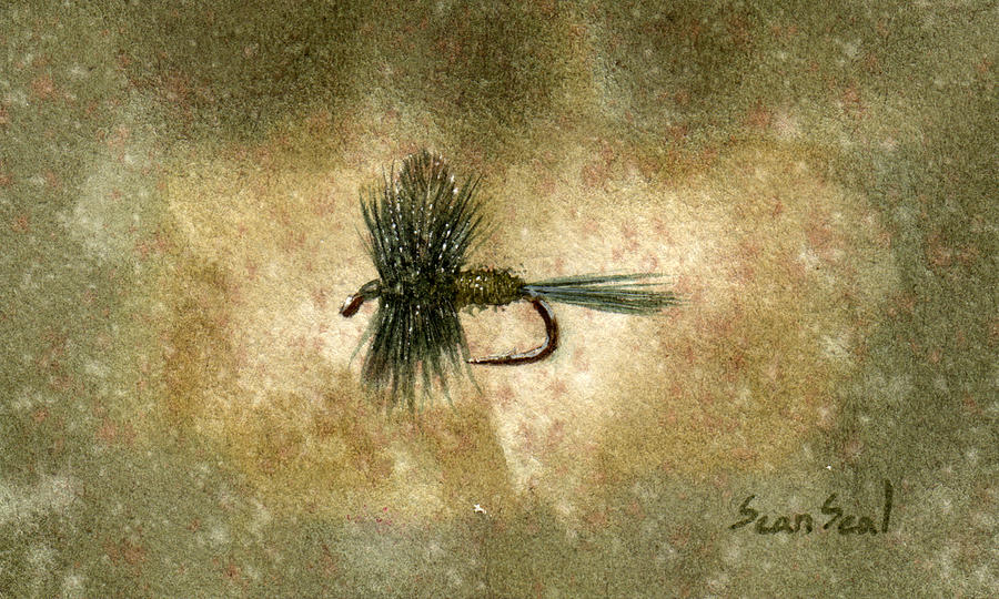 Fishing Painting - Blue Winged Olive by Sean Seal