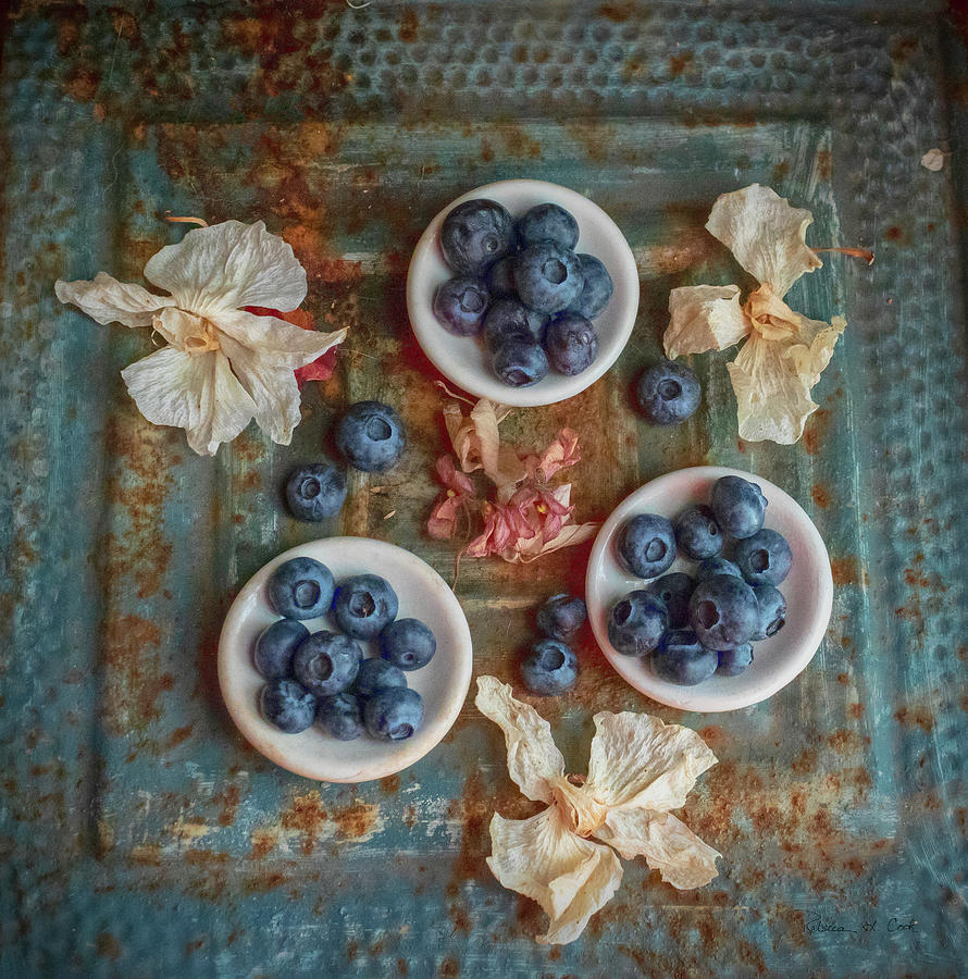 Blueberries And Old Tin by Bellesouth Studio