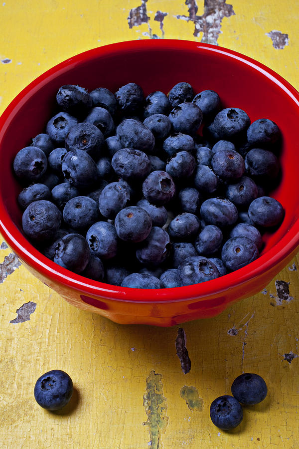 Fruit Photograph - Blueberries In Red Bowl by Garry Gay