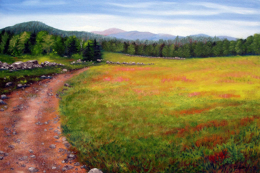Maine Painting - Blueberry Field 09 by Laura Tasheiko