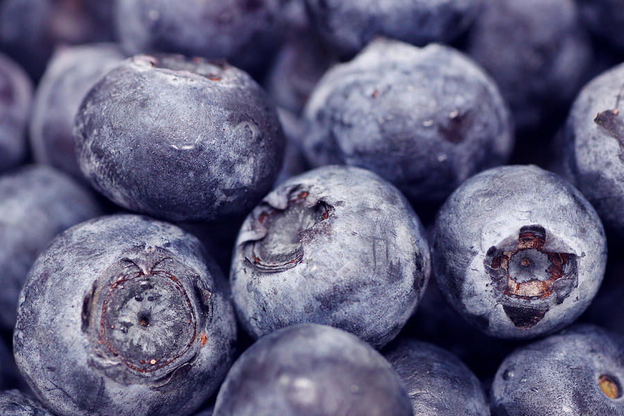 Background Photograph - Blueberry Macro by Kitty Ellis