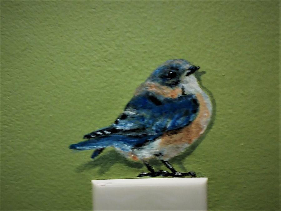 bluebird female by Violet Jaffe
