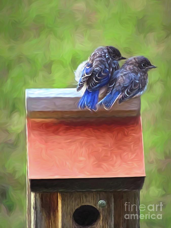 Bluebird Fledglings by Sue Melvin