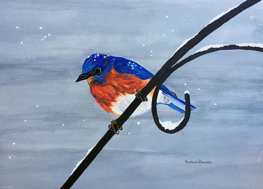 Bluebird in the Snow by Susan Bauer