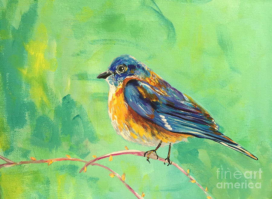 Bluebird by Kim Heil