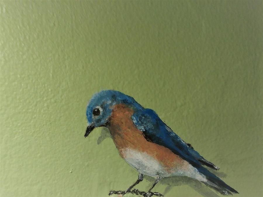 bluebird male by Violet Jaffe