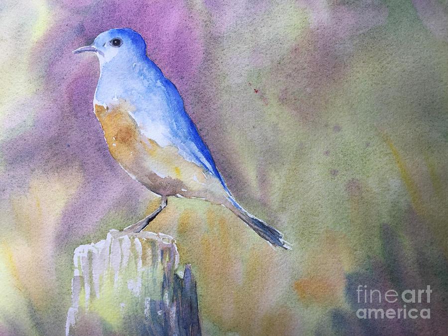 Blue Bird Painting - Bluebird by Watercolor Meditations
