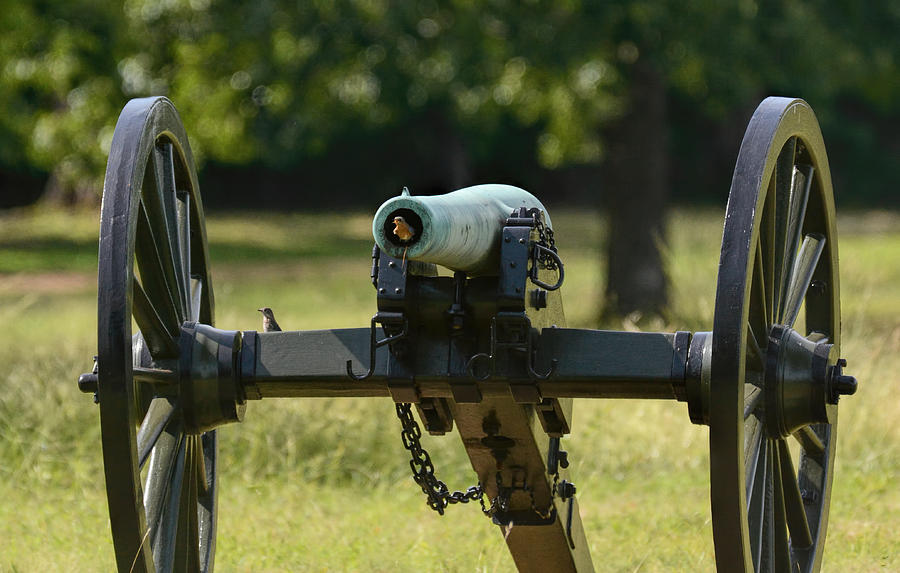 Bluebirds On The Cannon Shiloh Tennessee 052620156377 Photograph