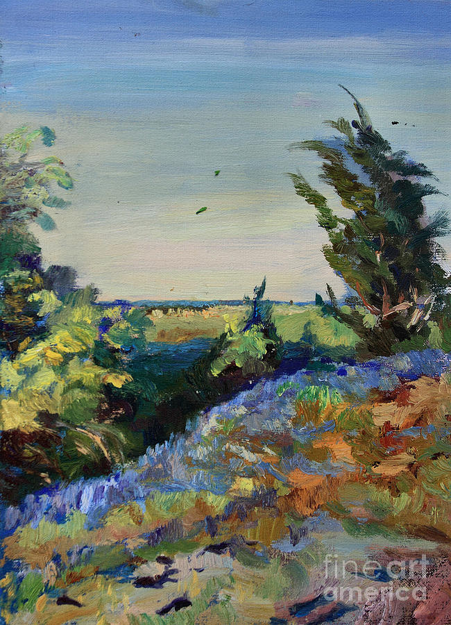 Oil Painting Painting - Bluebonnets On A Hill by Maris Salmins