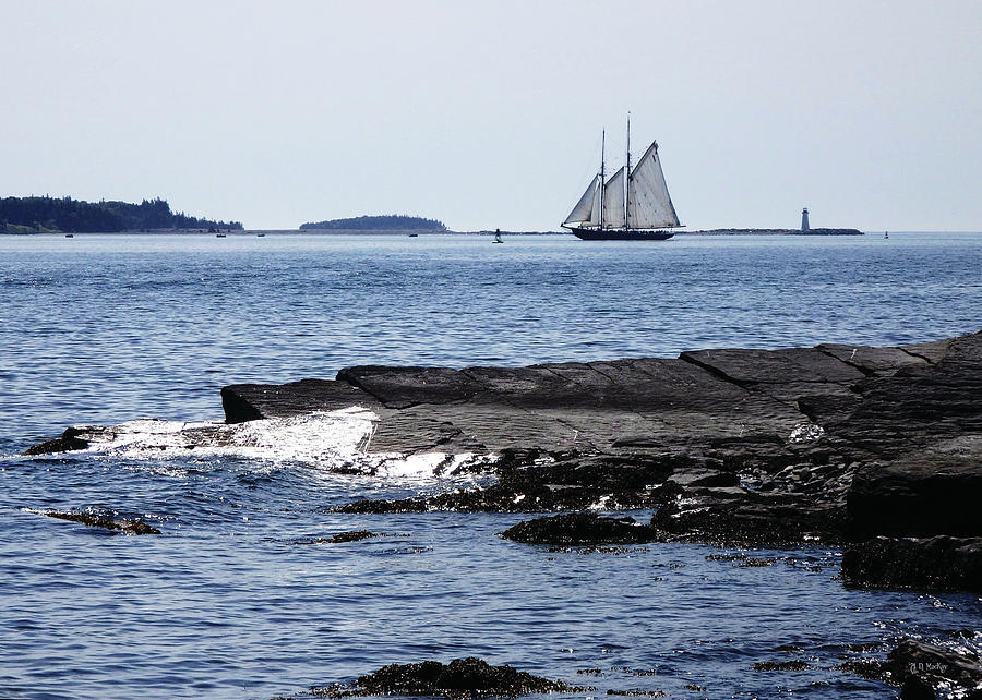 Seascape Photograph - Bluenose II in Halifax Harbour by Celtic Artist Angela Dawn MacKay