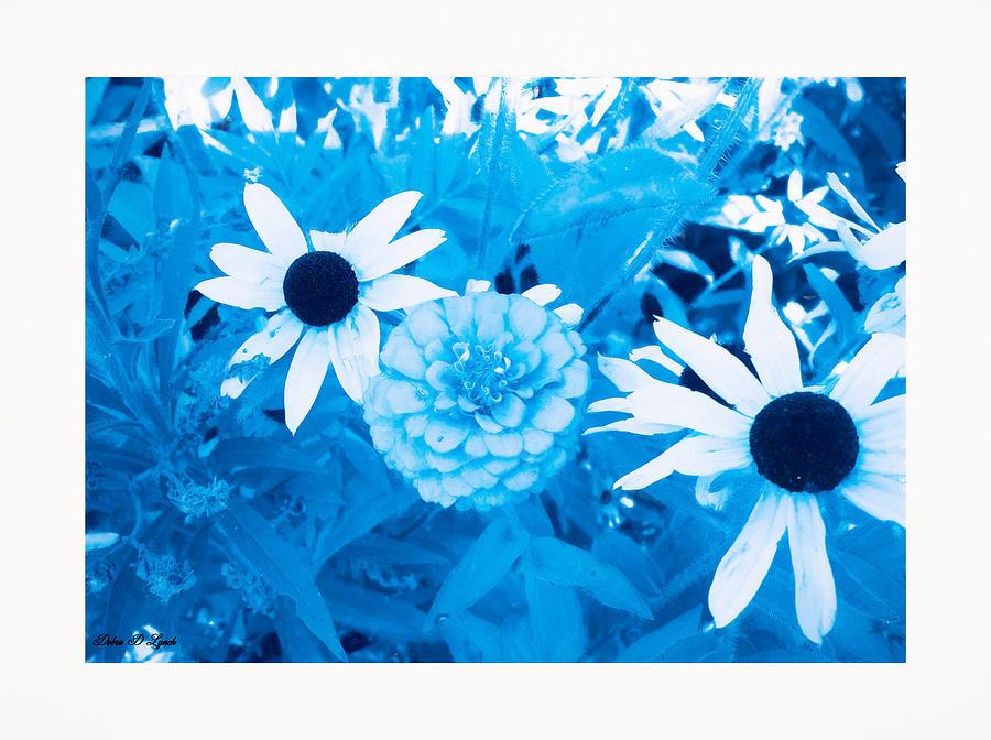 Flowers Photograph - Blues Art by Debra Lynch