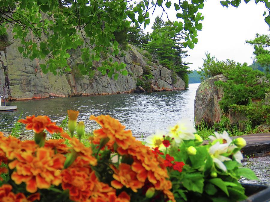 Bluff Island Photograph
