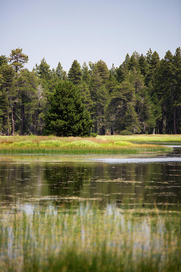 Landscape Photograph - Bluff Lake Ca 12 by Chris Brannen