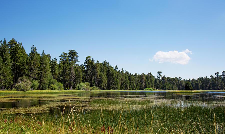 Landscape Photograph - Bluff Lake Ca 3 by Chris Brannen