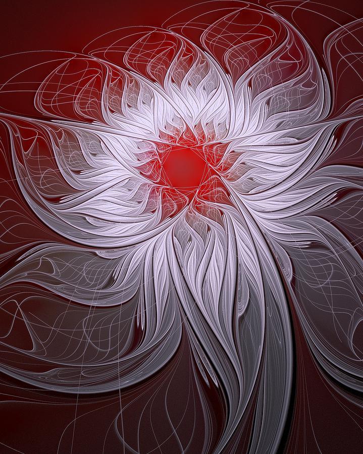 Fractal Digital Art - Blush by Amanda Moore