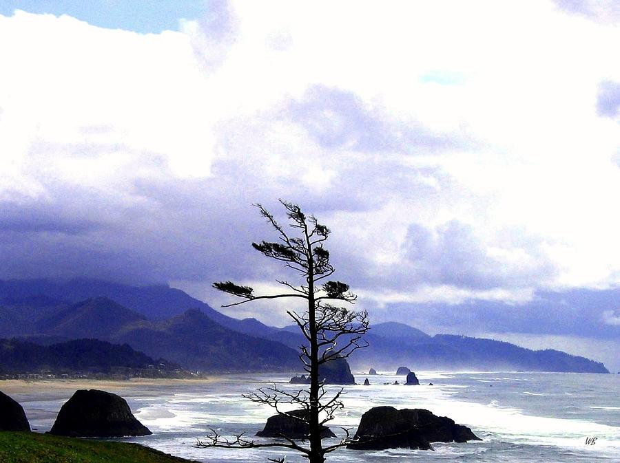 Blustery Photograph - Blustery by Will Borden