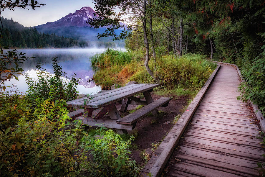 Fall Photograph - Boardwalk At Trillium Lake by Cat Connor