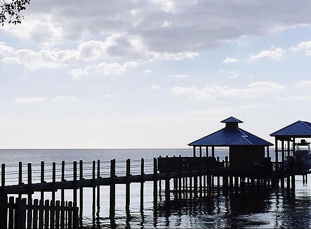 Pier Photograph - Boardwalk by Carmen Clark
