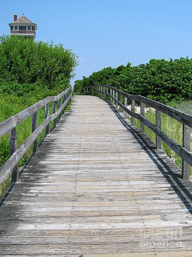 Boardwalk Photograph - Boardwalk by Colleen Kammerer