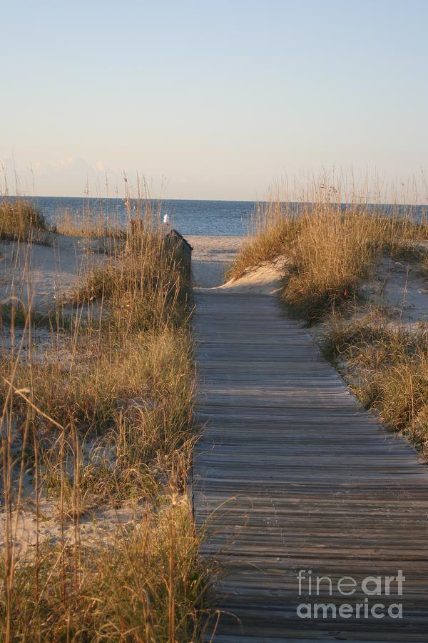 Boardwalk Photograph - Boardwalk To The Beach by Nadine Rippelmeyer