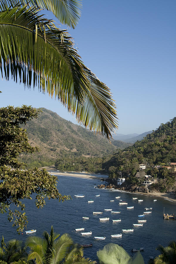 Mexican Photograph - Boats And Beach In Yelpa by Carl Purcell