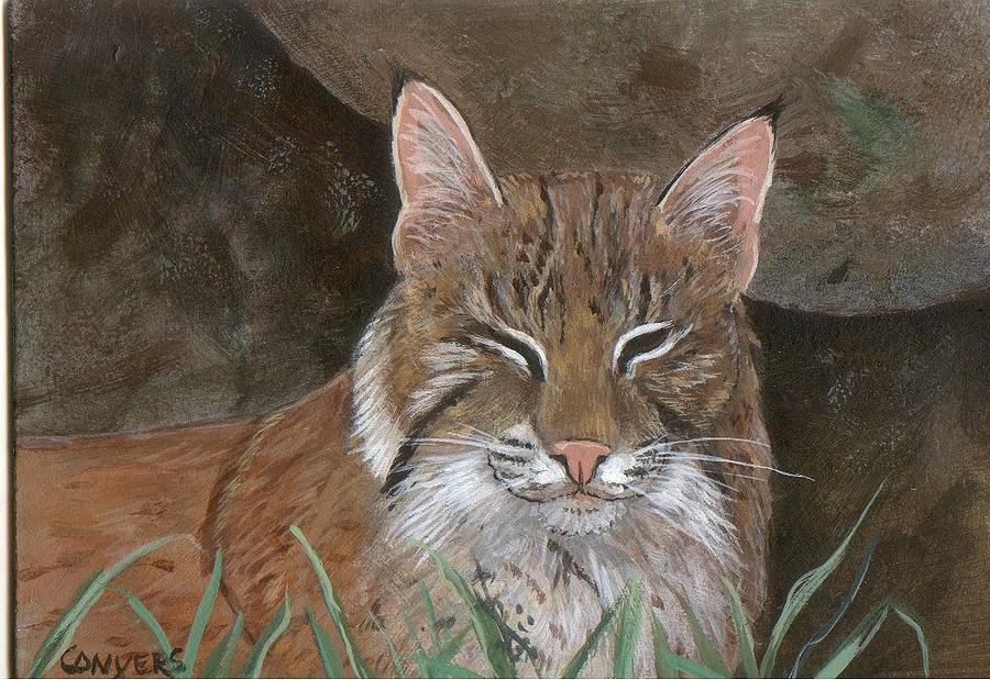Cat Painting - Bob Cat by Peggy Conyers