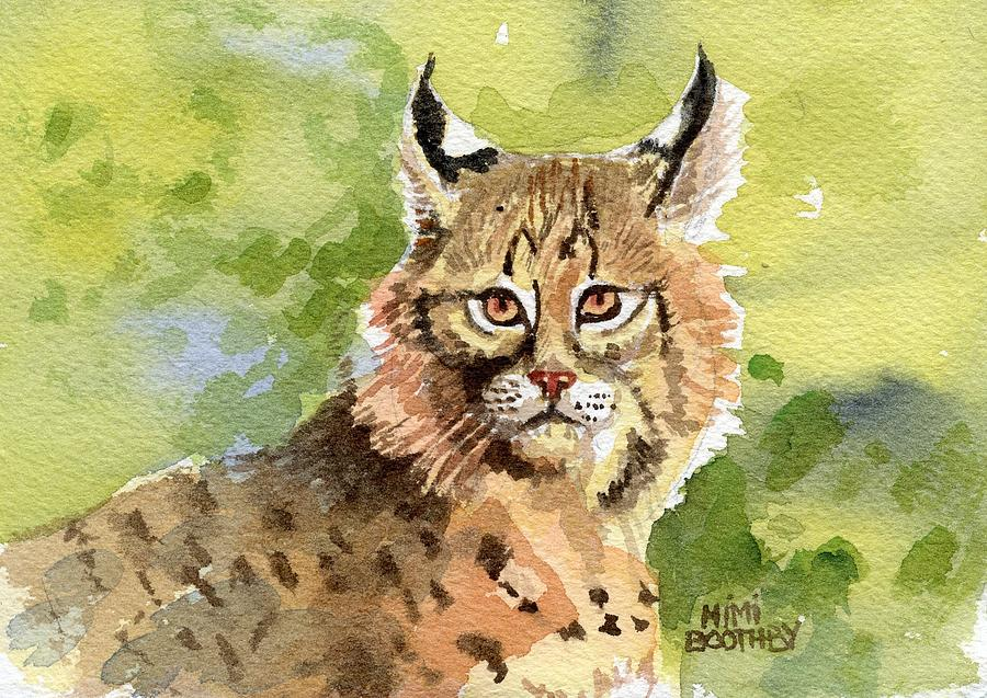 Bobcat Painting - Bobcat by Mimi Boothby