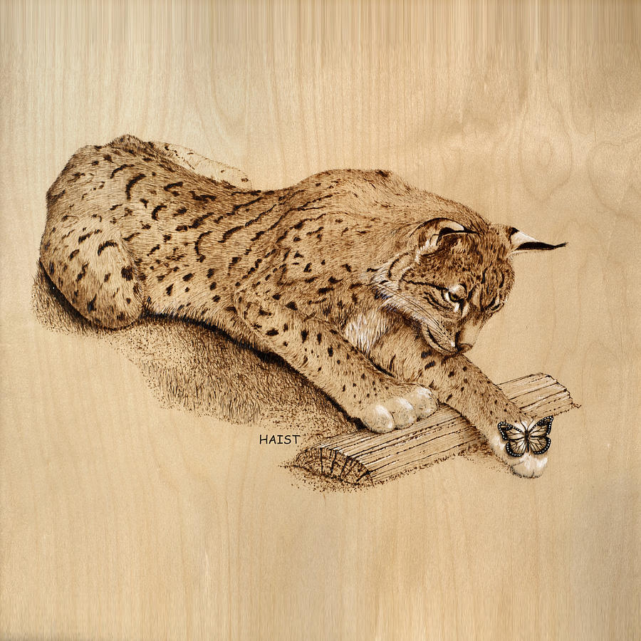 Bobcat n Friend Pillow /bag by Ron Haist