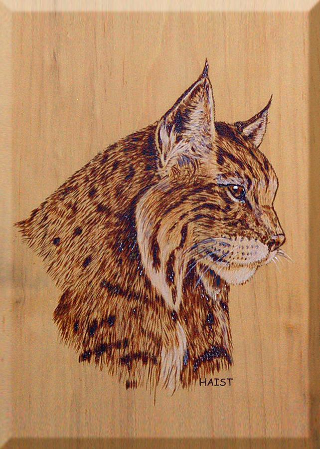 Bobcat Pyrography - Bobcat by Ron Haist