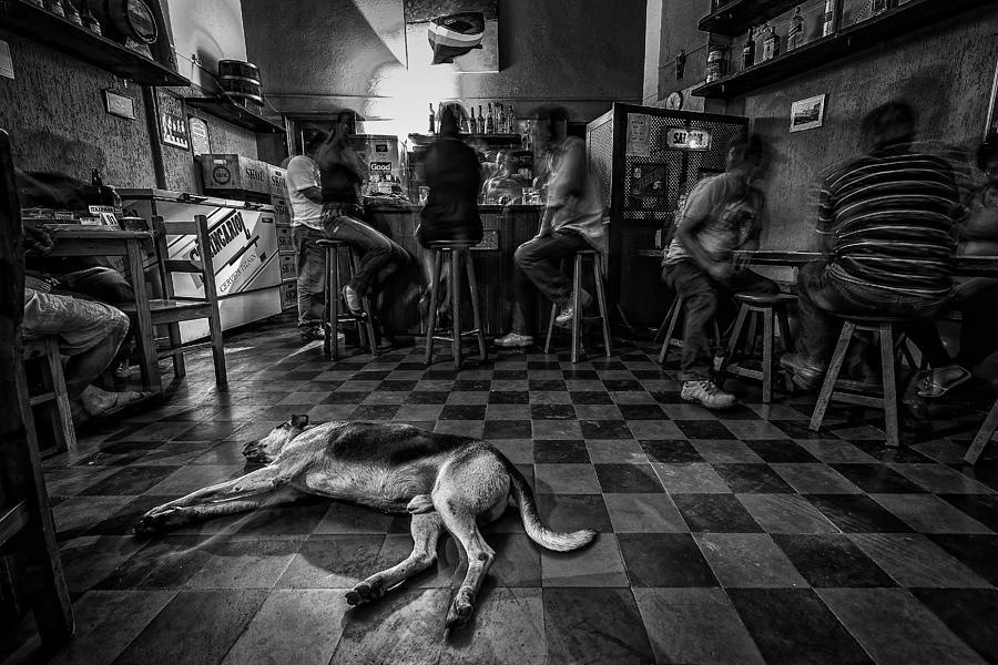 Interior Photograph - Bohemia by Carlos Aliperti