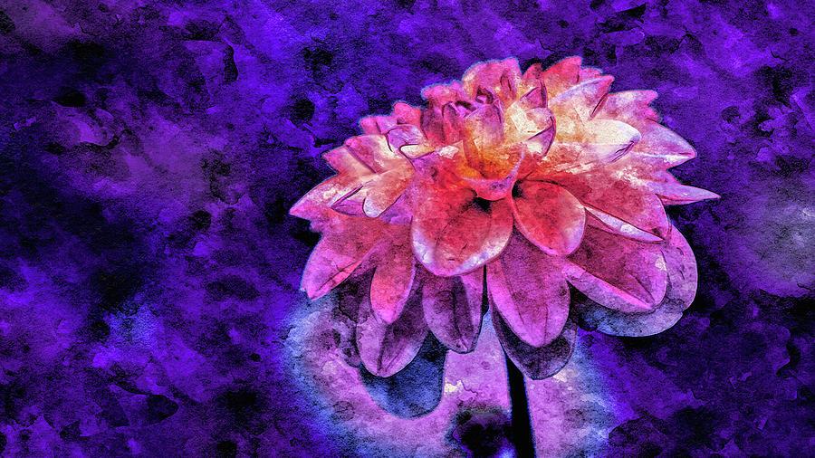 Bohemian Bloom by Susan Maxwell Schmidt