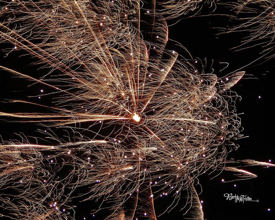 Fireworks Photograph - Bold Burst #0711 by Barbara Tristan