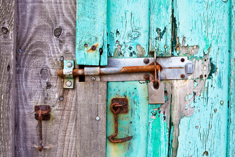 Area Photograph - Bolted Door by Tom Gowanlock