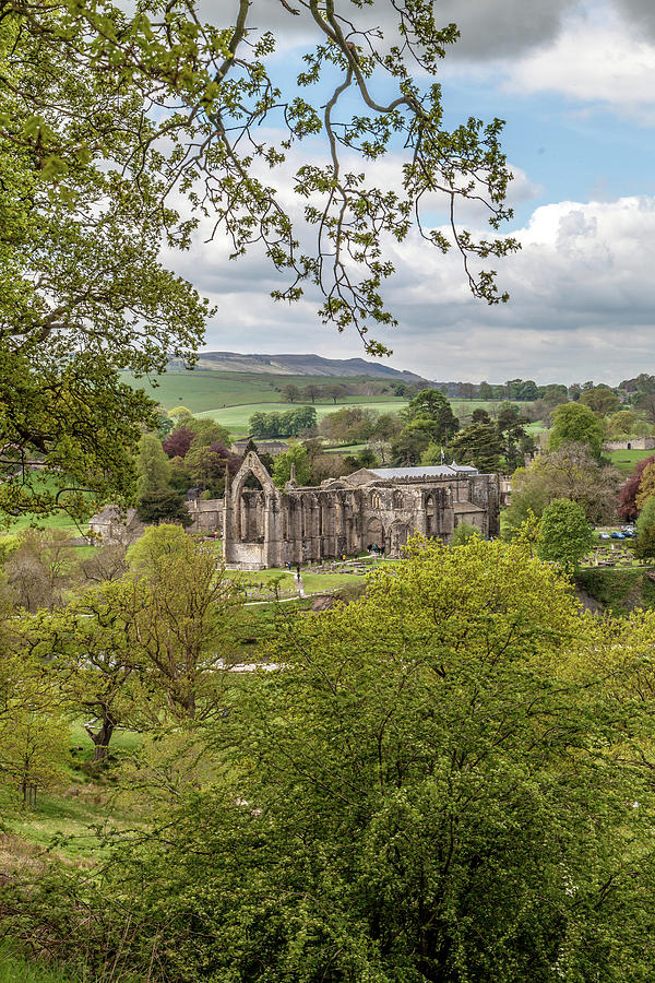 Valley Photograph - Bolton Abbey In Spring by W Chris Fooshee