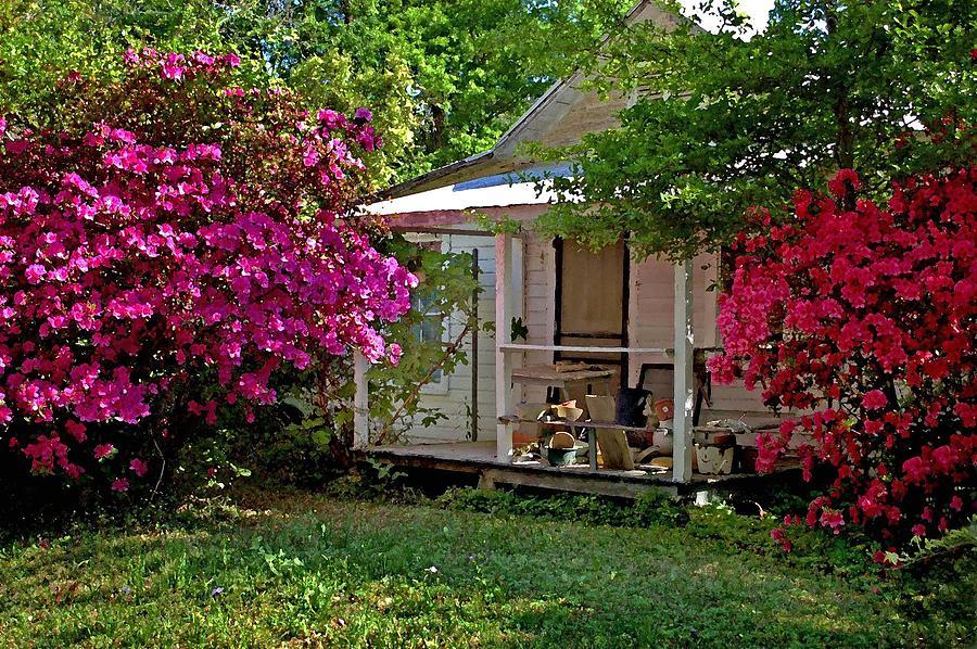 Flowers Digital Art - Bon Secour Pink Porch by Michael Thomas