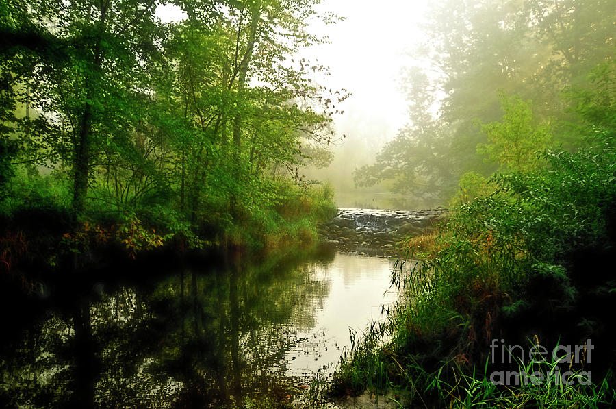 Bonneyville Mill Photograph - Bonneyville Mill Waterfall by David Arment