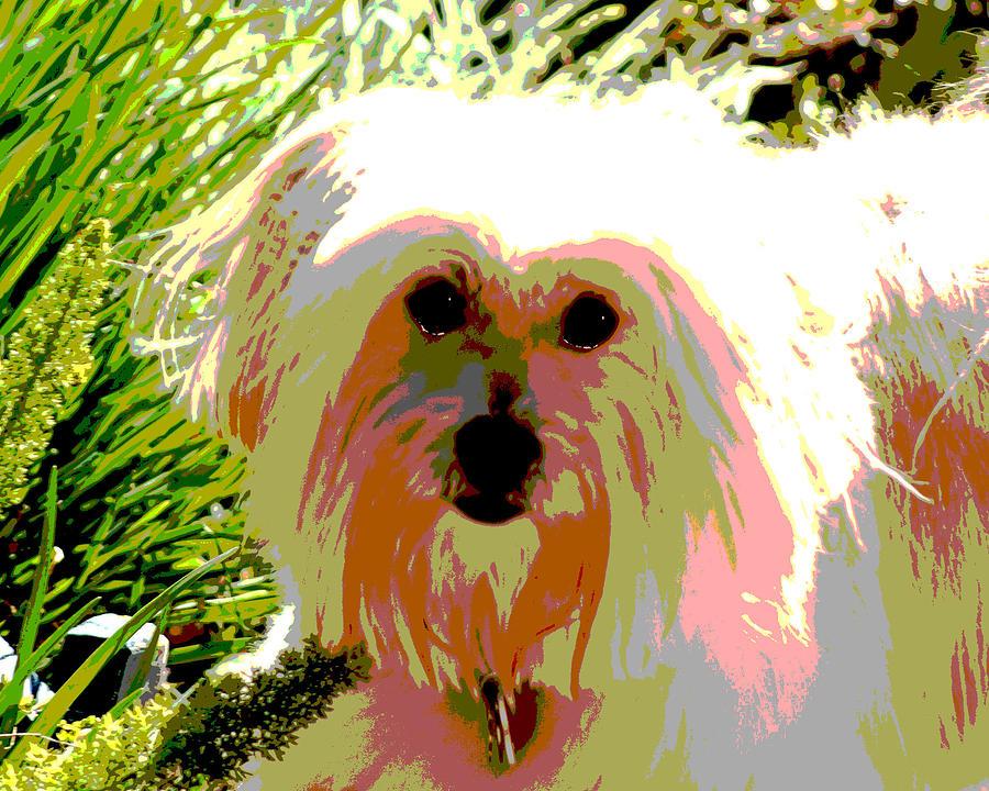 Portrait Photograph - Bonnie In Color by Ellen Lerner ODonnell