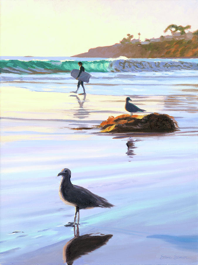 Boogie Boarder and Birds by Steve Simon